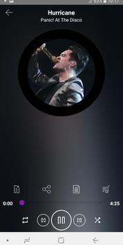 Panic! At The Disco  - songs with lyrics screenshot 1