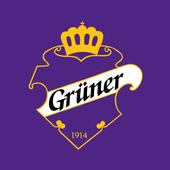 Grüner Ishockey icon