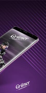 Grüner Ishockey screenshot 1