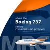 B737 MRG ikona