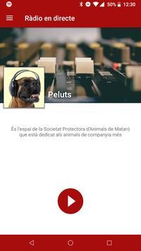 Alpicat Radio poster