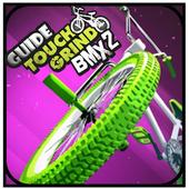 Tricks Touchgrind BMX 2 icon