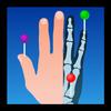 e-Anatomy ícone