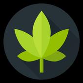 Dope Wars icon