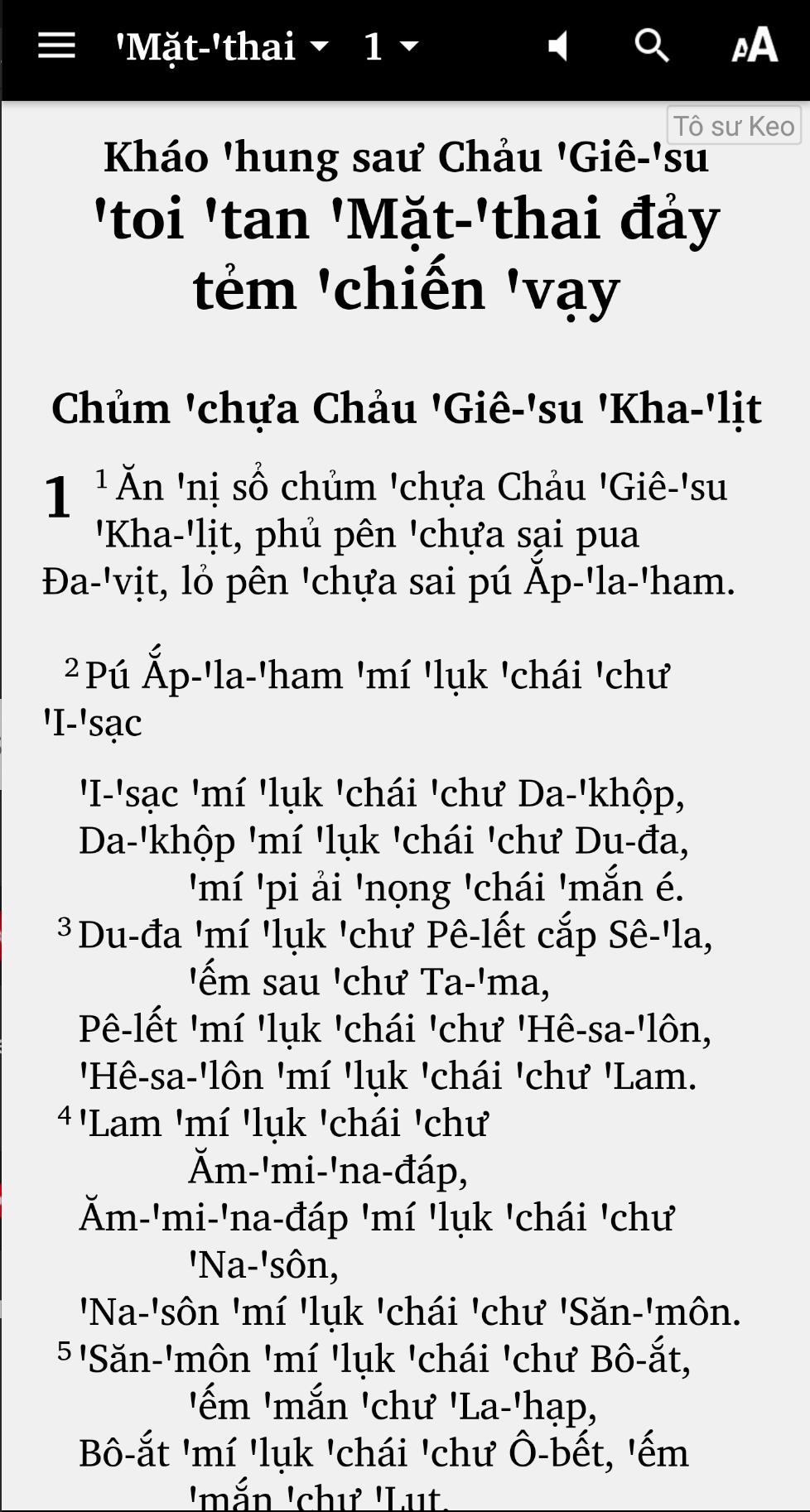 Quám Chảu Pua Phạ ກວາມເຈົ້າປົວຟ້າ Tai Dam Bible for
