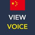中国語の発音学習:ピンイン・単語・語彙、スピーキング能力の向上の勉強法 - ViewVoice