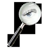 Web Spy icon