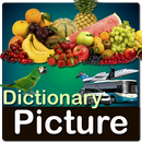 Picture Dictionary APK