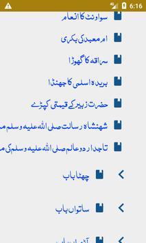 Seerat E Mustafa (SAW) screenshot 1