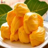 Benefits of jackfruit icon