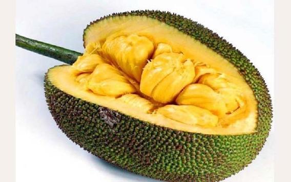 Benefits of jackfruit screenshot 1