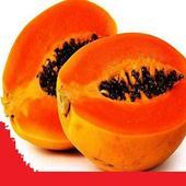 Benefits of papaya icon