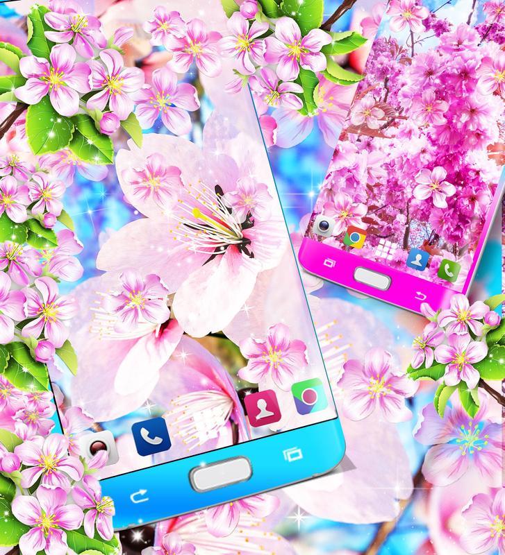 Sakura Flowers Live Wallpaper Pour Android Telechargez L Apk