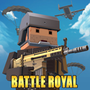 Pixel Battle Royale icon