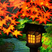 錦秋の坂道 icon