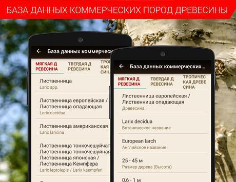 Калькуляторы для древесины - TIMBERPOLIS скриншот 6