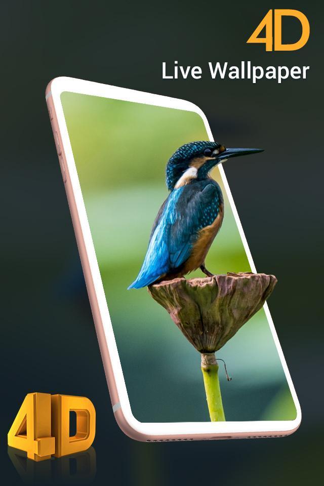 4D Best Live Wallpaper HD - Auto Wallpaper Changer for ...