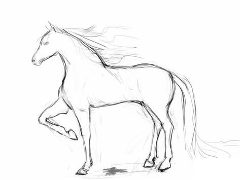 How to draw a horse screenshot 3
