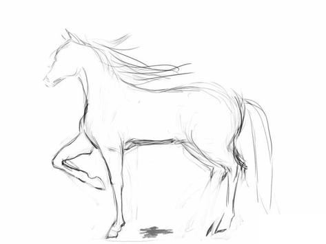 How to draw a horse screenshot 2
