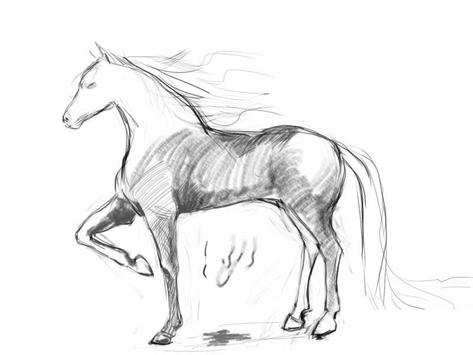 How to draw a horse screenshot 4