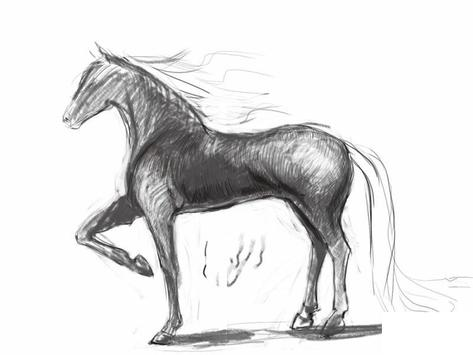 How to draw a horse screenshot 5