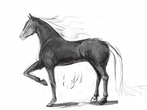 How to draw a horse screenshot 6