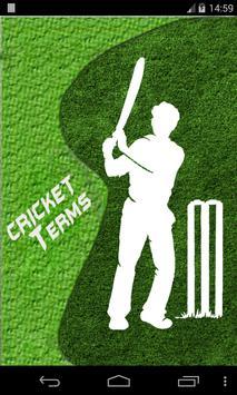 Cricket Terms Cartaz