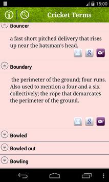 Cricket Terms imagem de tela 2