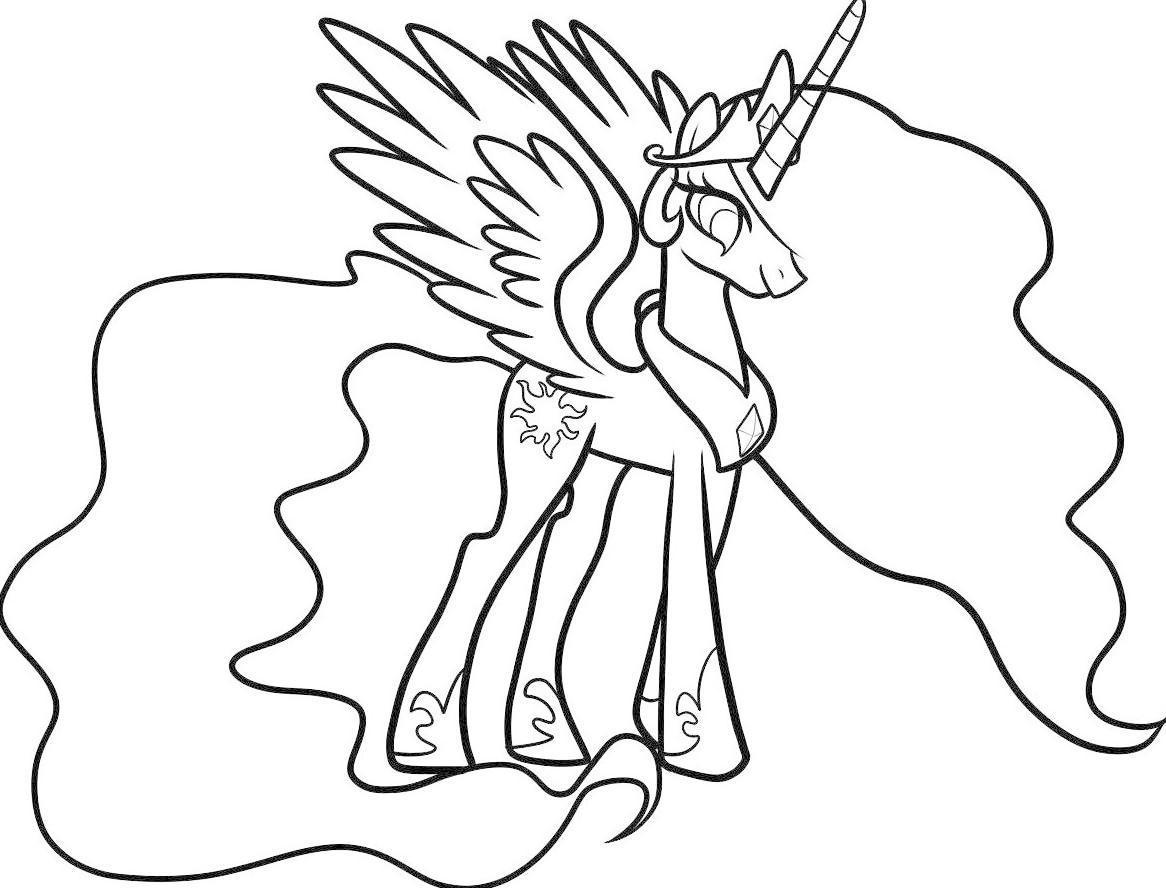 Gambar Kuda Poni For Android Apk Download