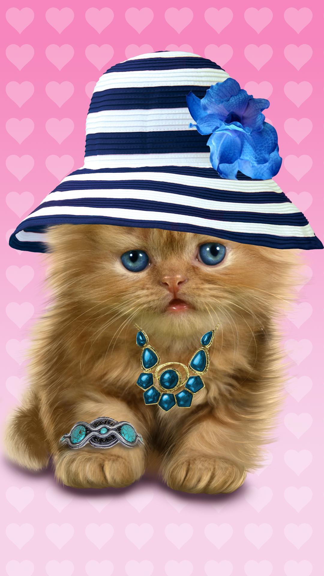 Baby Cat Cute Live Wallpaper For Android Apk Download