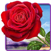 Rose. Magic Touch Flowers-icoon