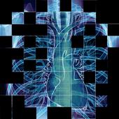 Discover Radiology: Chest X-Ray Interpretation v1.0.20 (Premium)