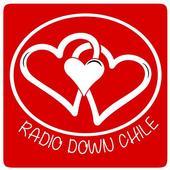 Radio Down Chile icon
