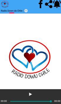 Radio Down Chile poster