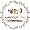 Radio NebunYa Nebunia Manele 아이콘