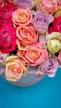 Rose Live Wallpaper تصوير الشاشة 2