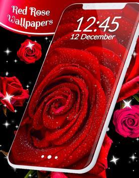 Red Rose Live Wallpaper screenshot 4