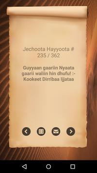 Jechoota Hayyoota Oromoo screenshot 1