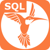 SQL ikona