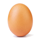 Угадай яйцо знаменитости icon