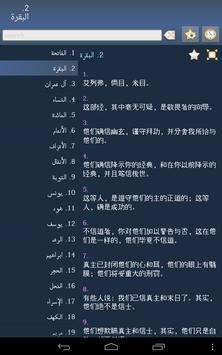 Quran in Chinese screenshot 6
