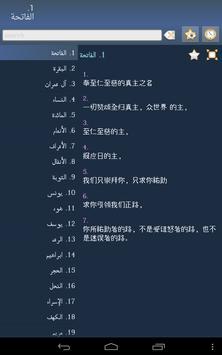 Quran in Chinese screenshot 10