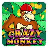 Monkey World Story icon