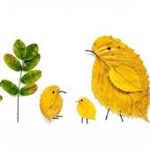 Аппликации из осенних листьев icon