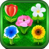 Bouquets icon