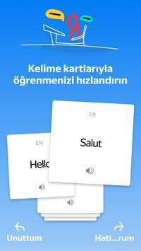 Yandex.Çeviri: çeviri ve çevrimdışı sözlük Ekran Görüntüsü 6