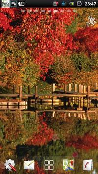 lake autumn lwp poster