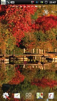 lake autumn lwp screenshot 1