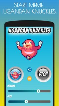 Ugandan Knuckles on the Screen screenshot 1