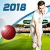 Cricket Captain 2018 icono